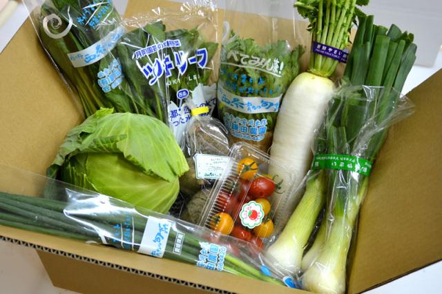 季節の新鮮野菜おまかせセット
